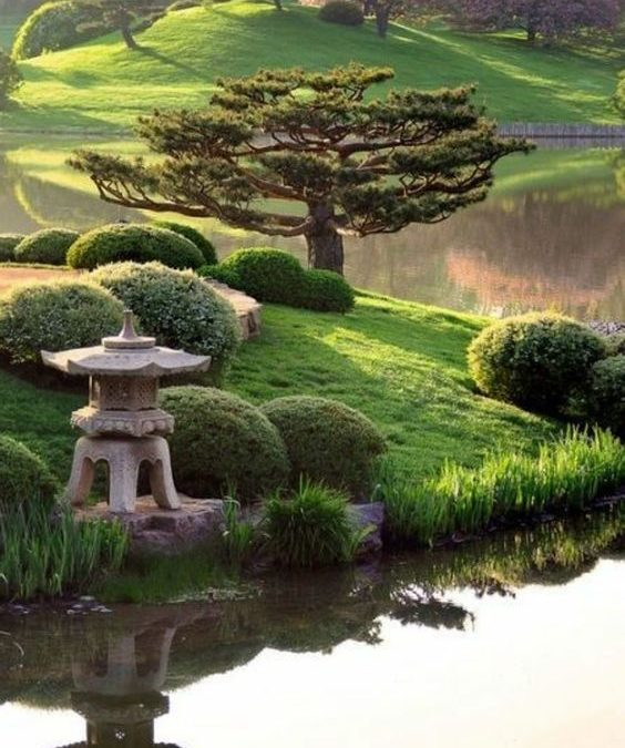Focus sur la pratique du Reiki traditionnel japonais